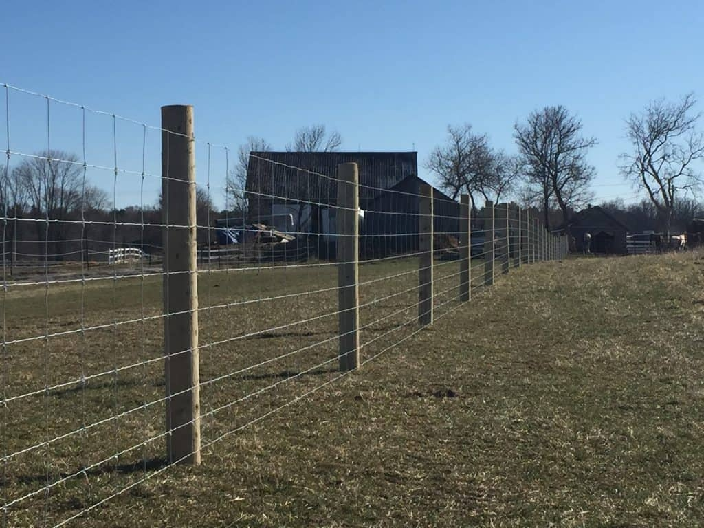 High Tensile Cattle Fence | Johnston Fence Contracting